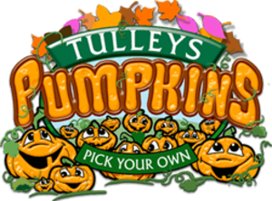 Tulleys Pumpkins